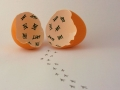 Public Choice 5th Prize - Hatched - Jonathan Orland